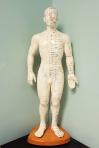 acupuncture by dr shruti sharma